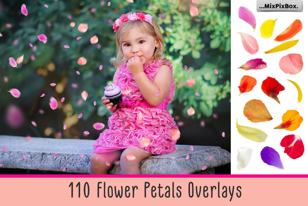 110 Flower Petals Photo Overlays