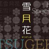 Font66 スペシャルパック 雪月花