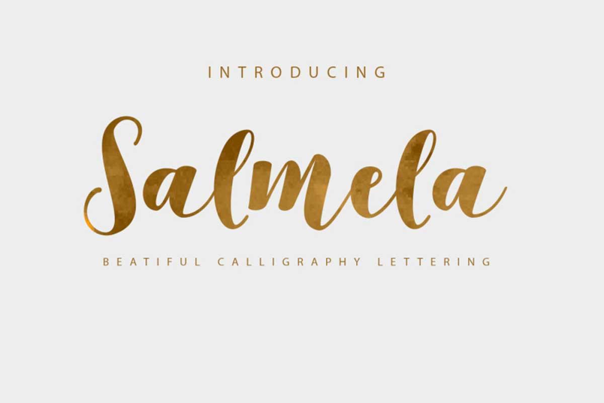 Salmela Script by Genesis Lab