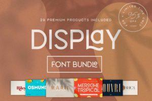 The Modern Display Font Bundle