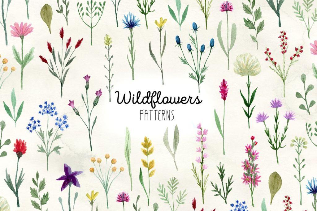 Watercolor Wildflowers. Patterns