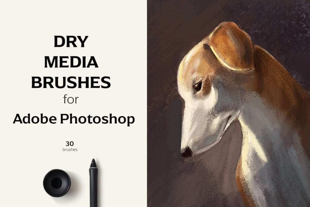 Dry Media Brushes - PS