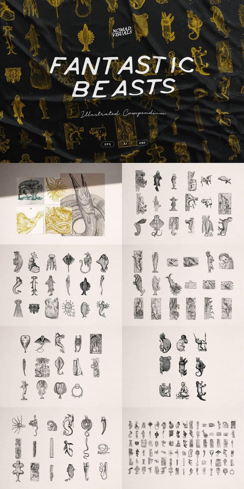 Fantastic Beasts Illustrations