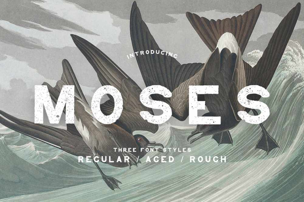 Moses – Display Grotesque Typeface