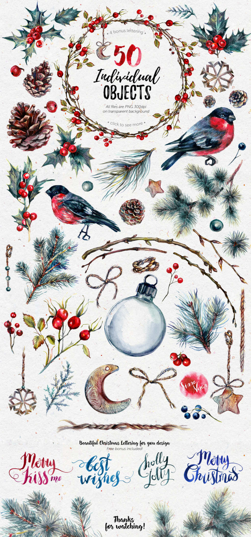 Mr. Bullfinch Watercolor Clip Art Xmas