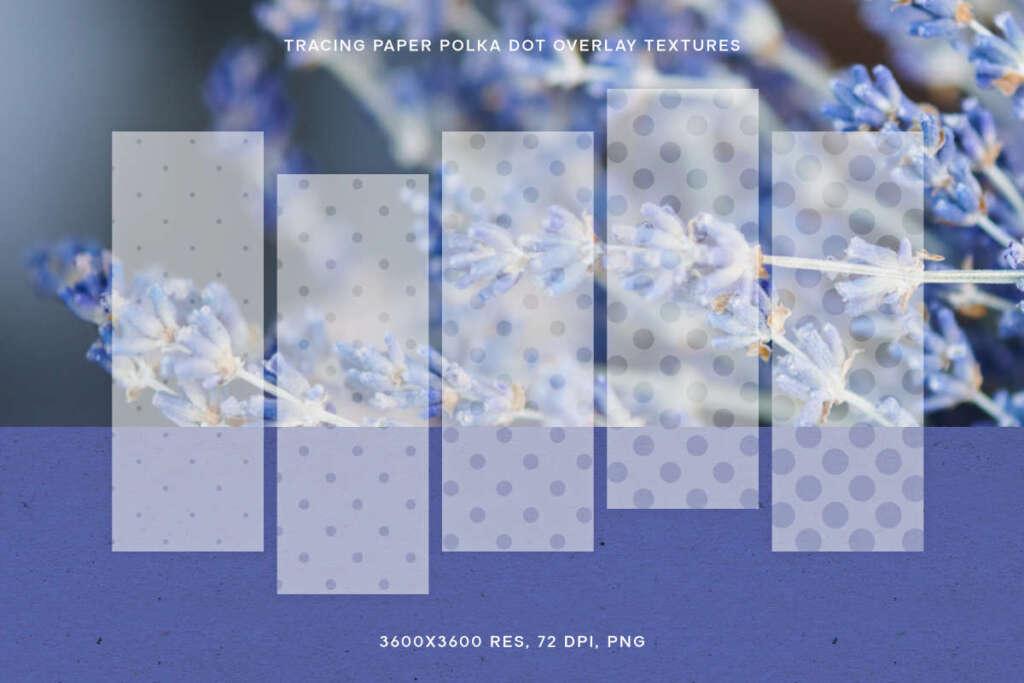 Tracing Paper Polka Dot Overlay Texture