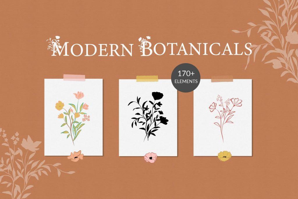 Modern Botanical Illustrations