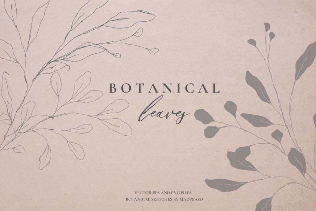 Botanical leaves - sketched florals
