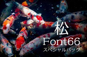 新春福袋・初売りセール:Font66スペシャルパック「松」