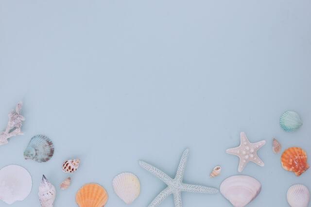 貝がらのフレーム