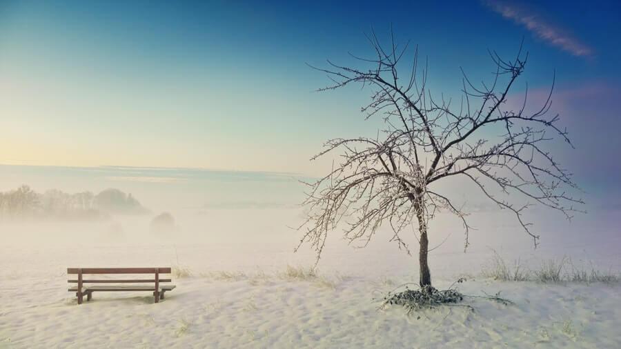 幻想的な霧がかった風景