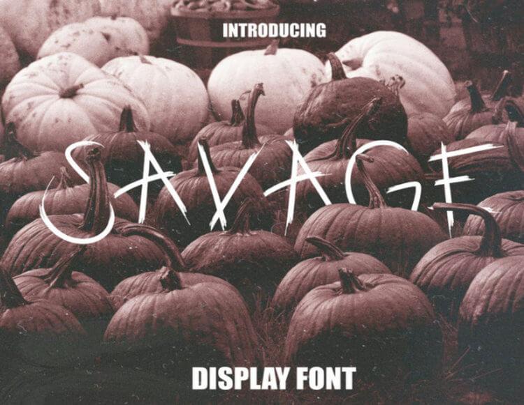 SAVAGE - FREE DISPLAY FONT
